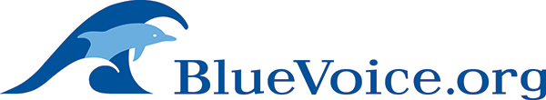 BlueVoice Logo